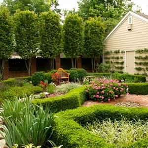 Благоустройство сада и Приусадебного участка