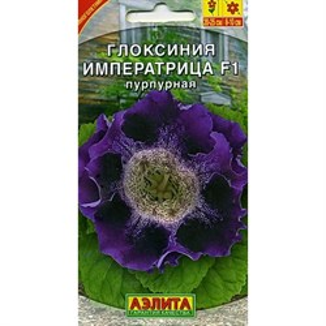 Глоксиния Императрица F1 пурпурная