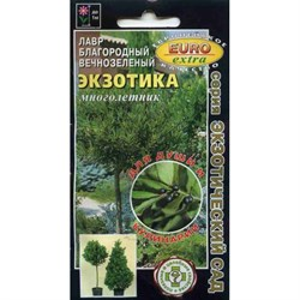 Лавр Экзотика вечнозеленый