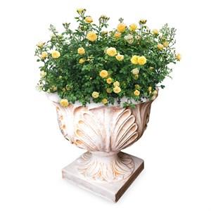 Кашпо цветочное Чаша