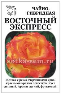 Роза Восточный Экспресс