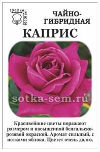 Роза Каприс