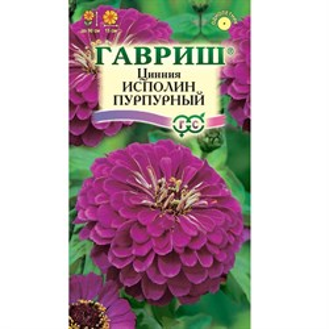 Цинния Исполин пурпурный 0,3гр