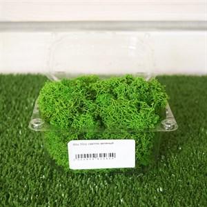 Мох 50гр светло-зеленый