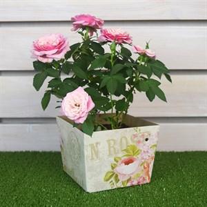Плайм пакет для цветов 110*150/125 Пион