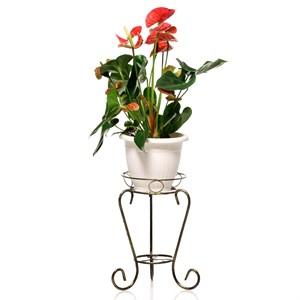 Подставка Лоза 14-001-ВG на 1 цветок