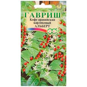 Кофе аравийский карликовый Альберт 5шт