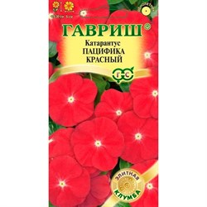 Катарантус Пацифика Красный 7шт