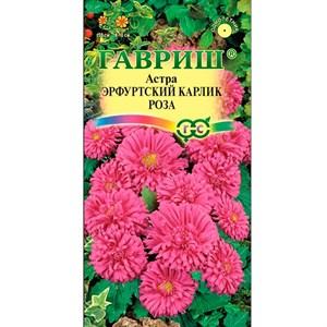 Астра Эрфуртский карлик роза 0,3гр