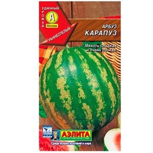 Арбуз Карапуз
