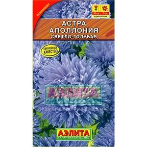 Астра Аполлония светло-голубая