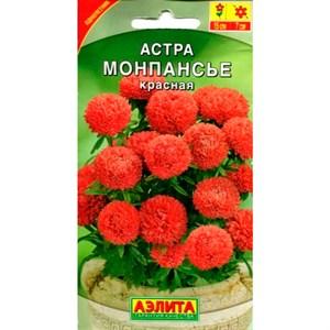 Астра Монпасье красная
