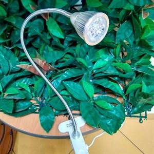 Фитосветильник Фитосинтез 5