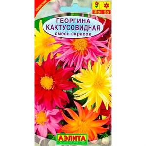 Георгина Кактусовидная смесь