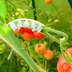 Держатель Листок кисти томатов 25шт