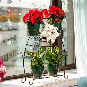 Подставка для цветов на подоконник 14-918 на 8 цветов